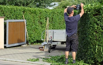 professional Aberdeen City hedge cutting services