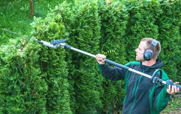 Aberdeen City hedge trimming costs